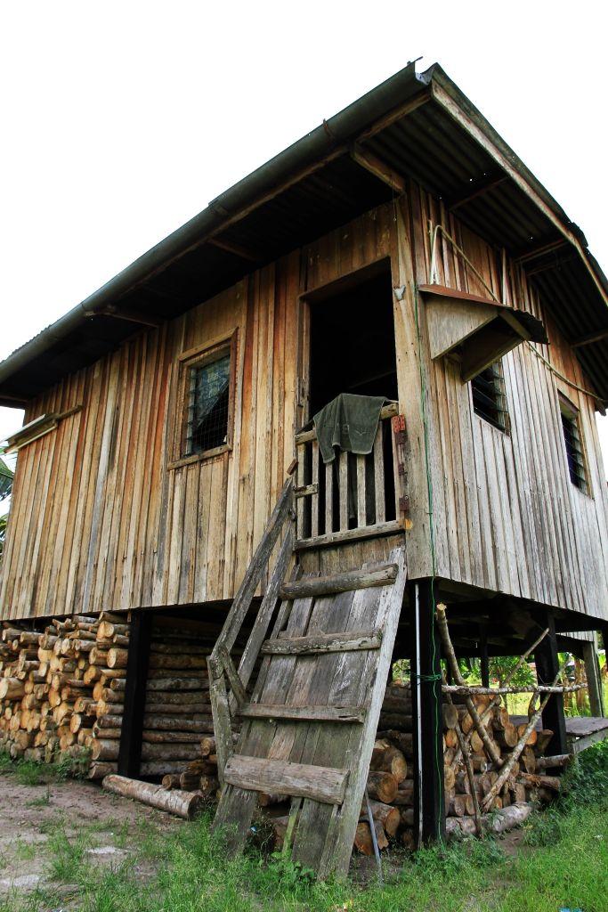 Wood, House